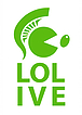 LOLIVE - Skoura Olive Oil Mill